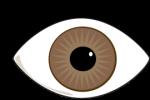 eye-brown