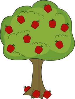 apple-tree-with-fallen-apples