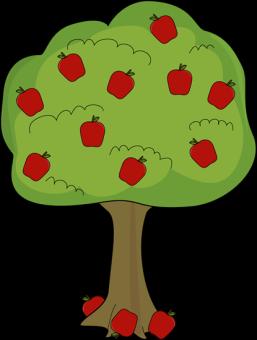 apple-tree-with-fallen-apples